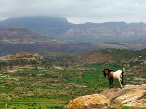 Włosi nie zdołali skolonizować Etiopii. Według legendy, kraj ten z powodzeniem bronił swej niepodległości przez 3000 lat. Na zdjęciu wygasły wulkan Ras Daszan (fot: ethiopic.com)