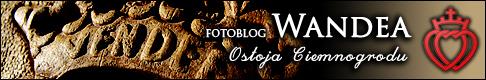 wandea_logo_banner